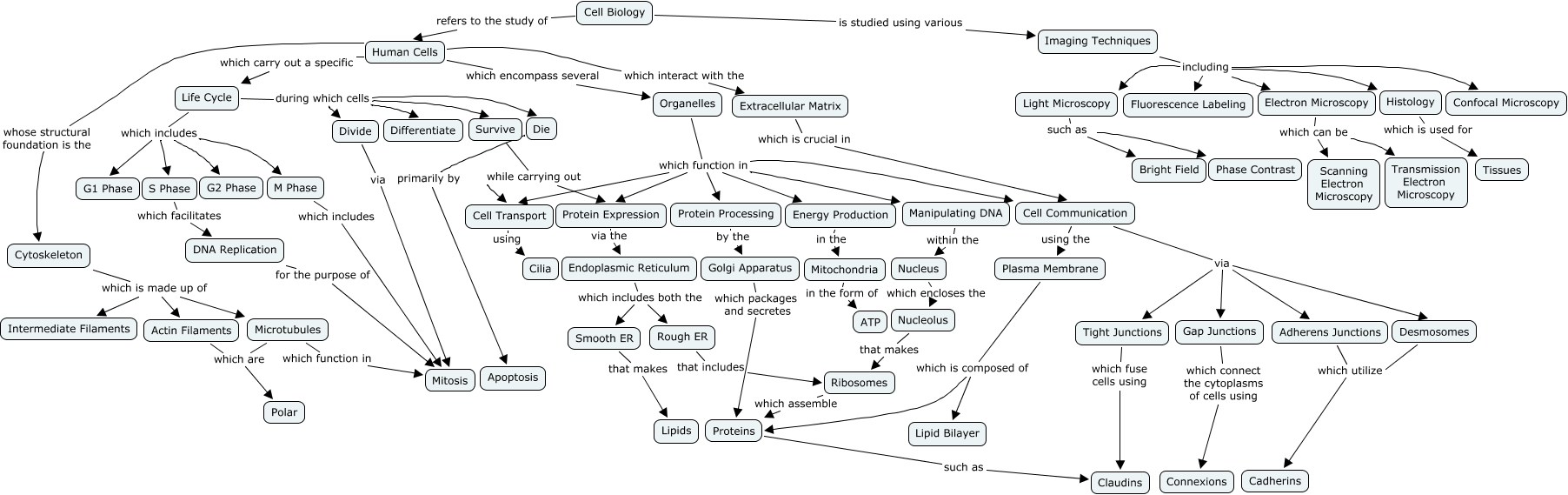 Cell Biology Concept Map   What are the key facets of cell biology?
