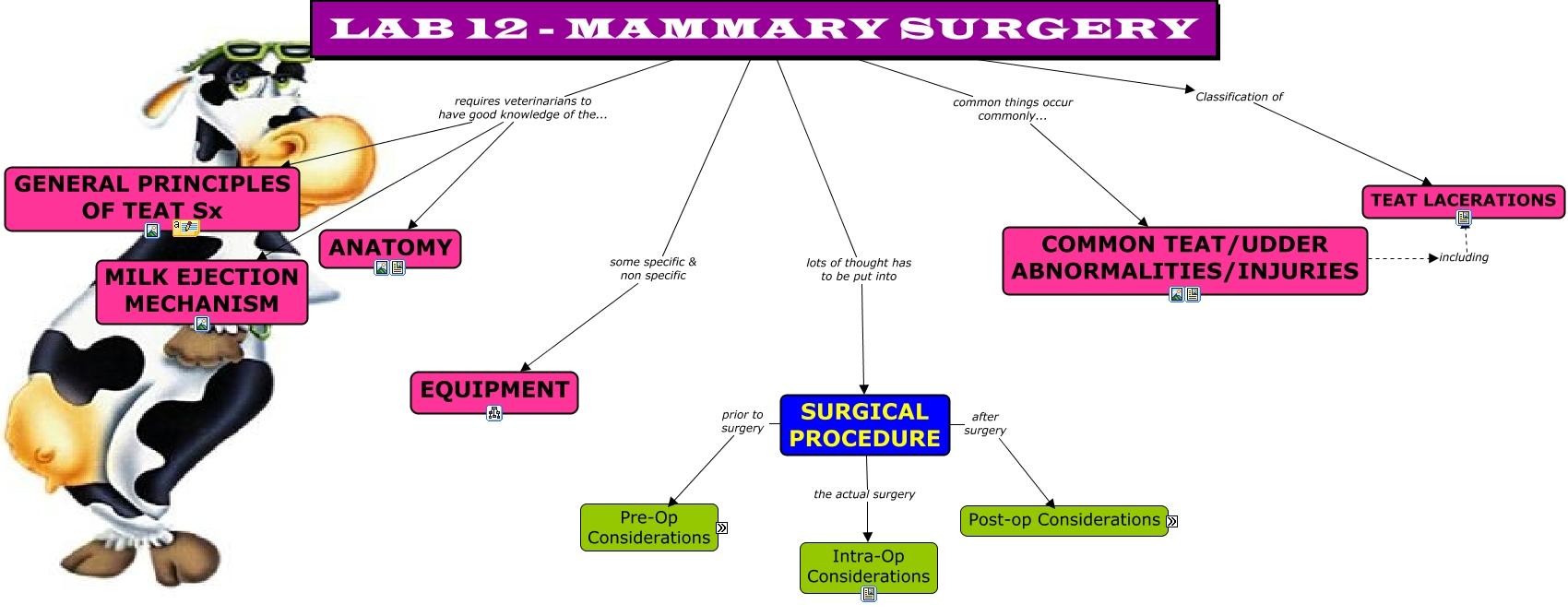 MAMMARY SURGERY